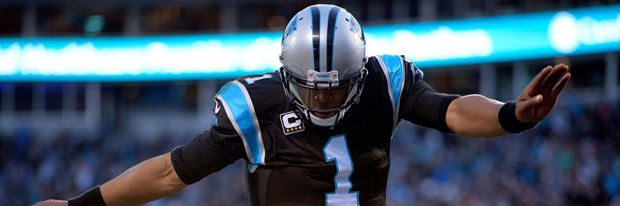 The Panthers should be one of your NFL Week 12 Betting Picks.
