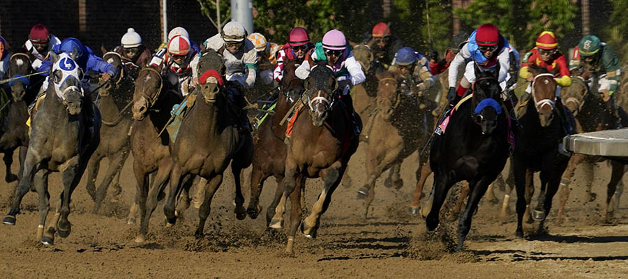 Horse Racing Betting: 2021 Belmont Stakes Odds Update