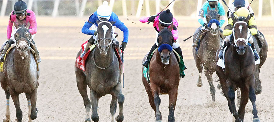 Horse Racing Betting: 2021 Kentucky Derby Preview