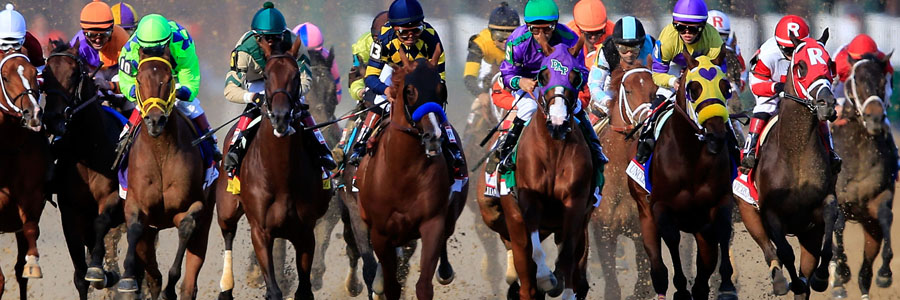 The 2018 Breeders Cup is going to be a great event.